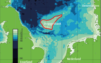 Ontwikkeling Energie eiland kan historische bijdrage vormen voor de Rotterdamse Haven