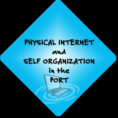 Fysiek internet en Zelforganisatie